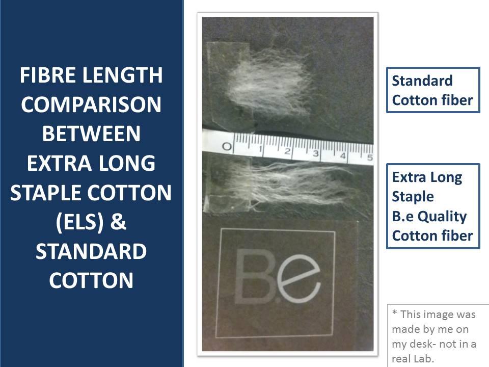 pima cotton vs traditional cotton fibre length